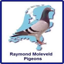 moleveld-logo-nieuw1